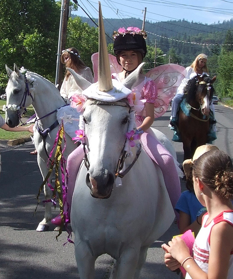 There was a unicorn in the 2006 parade 