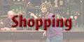 2016ShoppingButton