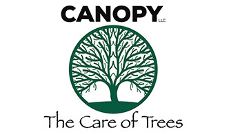 Canopy - The Care of Trees
